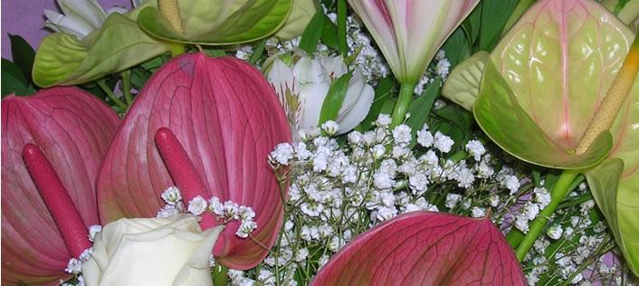 Super Allestimenti per cerimonie | Addobbi floreali per matrimoni IV04